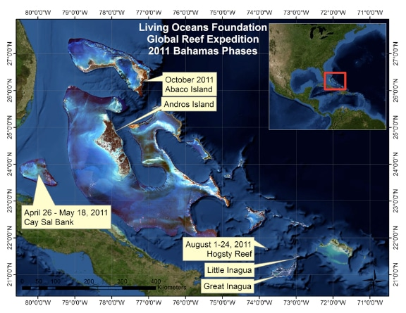 2011 Bahamas Global Reef Expeditions with the Khaled bin Sultan Living Oceans Foundation