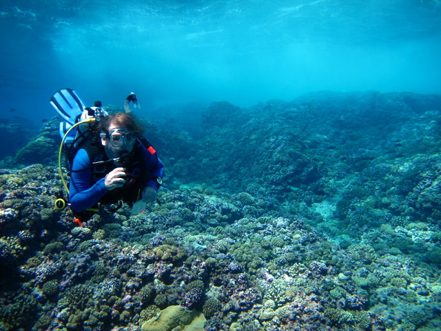 Jim Evans enjoying the coral cover on the shallow reef