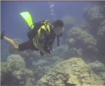 Dr. Pete Mumby diving by dead Porites colonies